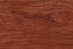 Textura de madeira natural vermelha Foto extremamente de alta resolução Fotos de Stock Royalty Free