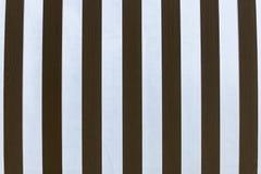 Textura de madeira no branco Fotografia de Stock Royalty Free