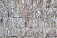 Textura de madeira para a textura do fundo Imagens de Stock Royalty Free