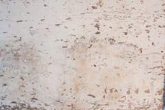 Textura de madeira pintada Fotos de Stock