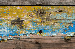 Textura de madeira pintada da prancha Fotos de Stock Royalty Free