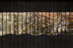 Textura de madeira pintada preto Imagem de Stock