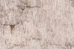 Textura de madeira pintada suja velha do fundo imagens de stock royalty free
