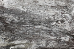 Textura de madeira Placa cinzenta da madeira com linhas resistidas da quebra Fundo natural para o projeto chique gasto Assoalho d Imagens de Stock