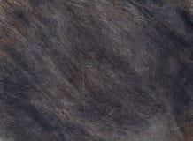 Textura de madeira preta usada da placa Imagem de Stock