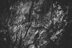 Textura de madeira preto e branco Foto de Stock