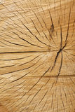 Textura de madeira rachada Fotografia de Stock Royalty Free