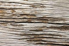 Textura de madeira rachada velha imagem de stock