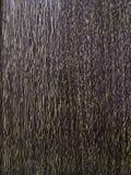 Textura de madeira relevo da textura Raças da madeira maciça imagem de stock