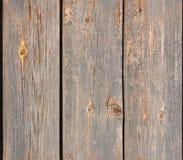 Textura de madeira (sem emenda) Imagem de Stock