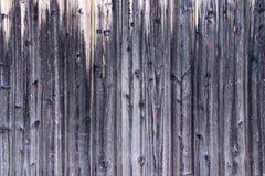 Textura de madeira A superfície do fundo de madeira natural cinzento para o projeto e o interior e o exterior da decoração foto de stock royalty free