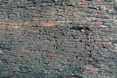 A textura de madeira velha Imagem de Stock Royalty Free