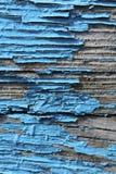 A textura de madeira velha azul foto de stock