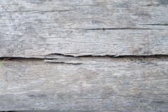Textura de madeira velha, fundo de madeira velho da textura Fotografia de Stock