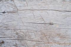 Textura de madeira velha, fundo de madeira velho da textura Imagem de Stock Royalty Free
