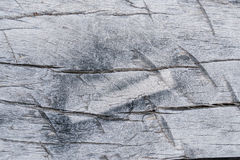 Textura de madeira velha, fundo de madeira velho da textura Foto de Stock Royalty Free