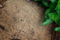 Textura de madeira velha para recursos gráficos Imagens de Stock Royalty Free