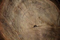Textura de madeira velha para recursos gráficos Fotografia de Stock