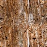 Textura de madeira velha sem emenda fotografia de stock