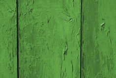A textura de madeira verde Fotos de Stock