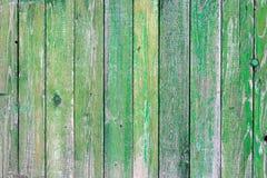 Textura de madeira verde Fotos de Stock