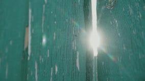 Textura de madeira verde da cerca vídeos de arquivo