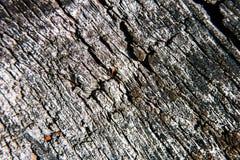 Textura de madera áspera del contraste del Grunge foto de archivo