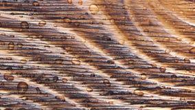Textura de madera almacen de video