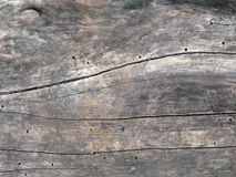 Textura de madera Fotos de archivo
