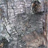 Textura de madera agrietada quemada. Imágenes de archivo libres de regalías