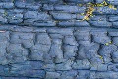 Textura de madera agrietada quemada Fotografía de archivo