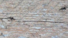 Textura de madera al aire libre