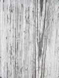Textura de madera blanca del viejo grunge Imagenes de archivo