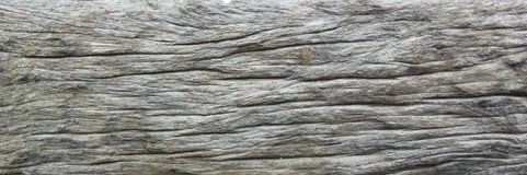 Textura de madera con el modelo natural Imágenes de archivo libres de regalías