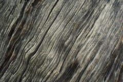 Textura de madera con el modelo natural Primer de la textura de madera Foto de archivo