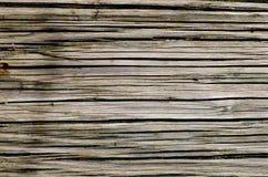 Textura de madera con la forma de la naturaleza Foto de archivo libre de regalías