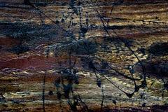 Textura de madera con la mancha blanca /negra Imagen de archivo