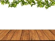 Textura de madera con las hojas y el fondo de la rama Pared de madera grunge Foto de archivo