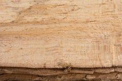 Textura de madera cruda del registro Concepto natural del modelo del árbol de Brown Fotos de archivo libres de regalías