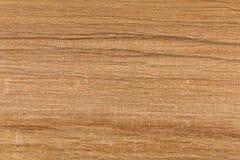 Textura de madera de abedul Imagen de archivo