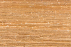 Textura de madera de abedul Foto de archivo