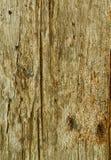 Textura de madera de Brown Fotografía de archivo