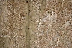 Textura de madera de Grunge Foto de archivo
