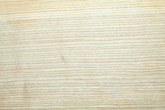 Textura de madera de la ceniza; Imagenes de archivo