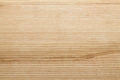 Textura de madera de la ceniza Imágenes de archivo libres de regalías