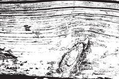 Textura de madera de la desolación Imagen de archivo