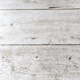 Textura de madera de la nuez blanca Imágenes de archivo libres de regalías
