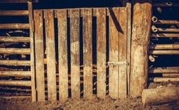 Textura de madera de la puerta Fotos de archivo
