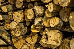 Textura de madera de las tarjetas del día de San Valentín Fotos de archivo