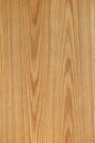 Textura de madera de roble Fotos de archivo libres de regalías
